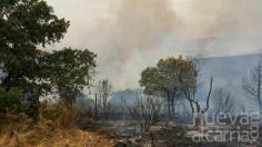 El incendio de Uceda se dio por extinguido el viernes a las 20.30 horas