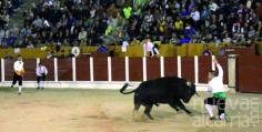 Andrés Solano, campeón del concurso goyesco de recortes
