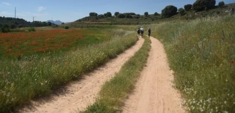 Diputación y CEOE organizan un viaje a La Alcarria para medios especializados en turismo