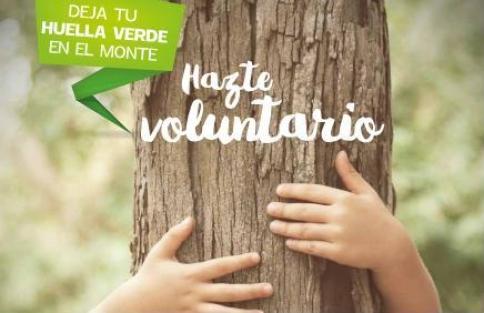 Apadrina un Árbol convoca un Programa de Voluntariado Ambiental