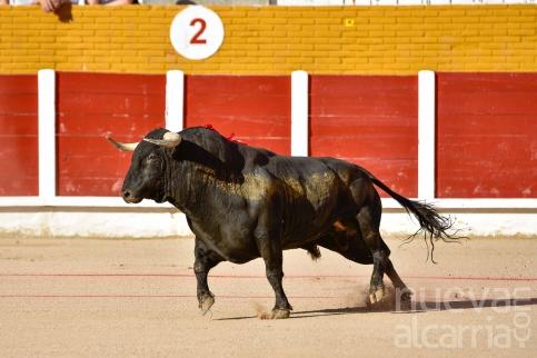 Guadalajara abrirá la temporada taurina 2017 con una Feria de Primavera