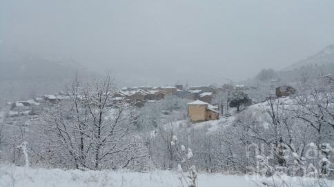 La nieve esquiva a Guadalajara capital... pero llega a los pueblos 'negros'