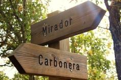 Yebes invita a vecinos y visitantes a descubrir en  dos jornadas los secretos del bosque de Valdenazar