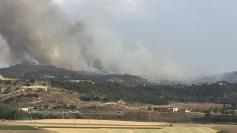 Extinguido el incendio de Almoguera