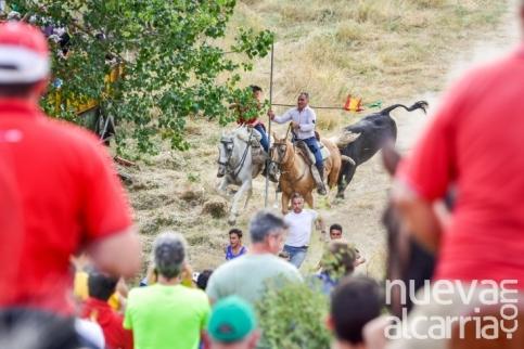 Brihuega está preparada para acoger este miércoles uno de los encierros más antiguos de España