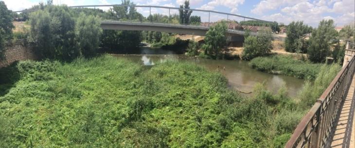 """Vecinos del entorno del río Henares piden revitalizarlo y actuar contra su """"falta de limpieza"""""""