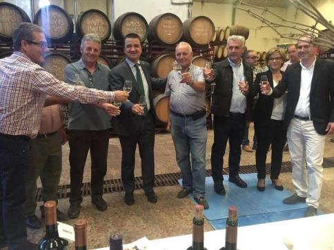 El Gobierno regional reducirá el mínimo permitido para obtener ayudas de reestructuración de viñedo el próximo año