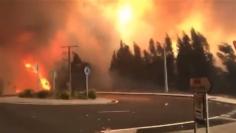 Medios de Guadalajara actúan contra el fuego en Galicia