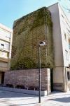 La plaza del Azafrán de Azuqueca estrena su jardín vertical