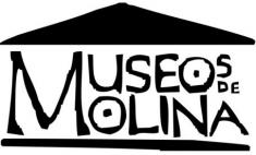 Museos De Molina
