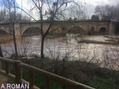 El alcalde de la ciudad pide precaución al pasear cerca del río Henares