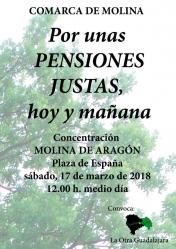 Concentración por unas Pensiones Justas en Molina de Aragón