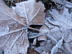 La primavera comenzará con frío, nieve y heladas fuertes en zonas de montaña