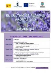 Jornada de cultivo de aromáticas en Cifuentes el lunes