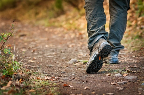 El Parque de la Sierra Norte acogerá un campamento de voluntariado internacional