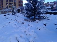 Guadalajara estarán este martes en riesgo por nieve