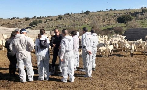 La Junta subvenciona la incorporación a la ganadería de 34 jóvenes de la provincia