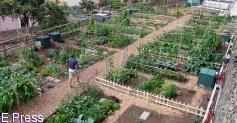 Agricultores ecológicos vuelven a exigir una