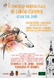 Ecualtur acoge el I Concurso Morfológico de Galgo Español