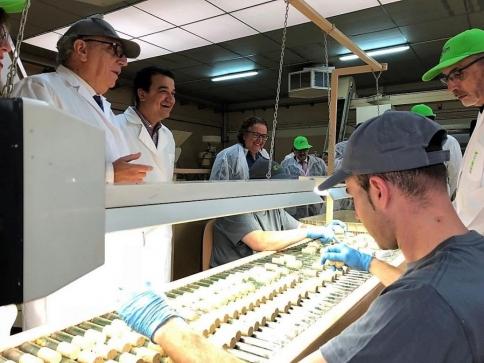 Consejero Agricultura avanza 3,7 millones de euros para impulsar la innovación tecnológica en el sector agroalimentario