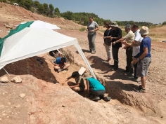 El Gobierno regional financia siete proyectos de investigación de patrimonio arqueológico y paleontológico en la provincia de Guadalajara