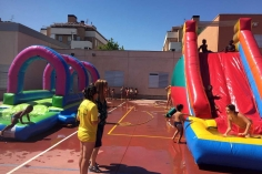 Sigue abierta la admisión en el campamento urbano de verano del Ayuntamiento