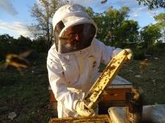 La miel cifontina Nectarius resulta premiada en los 'Great Taste'