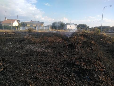 Incendio en un solar de 1.000 metros cuadrados en Trijueque