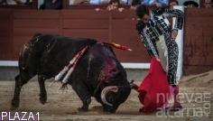 Juan Ortega impacta y corta  una oreja de peso en Las Ventas