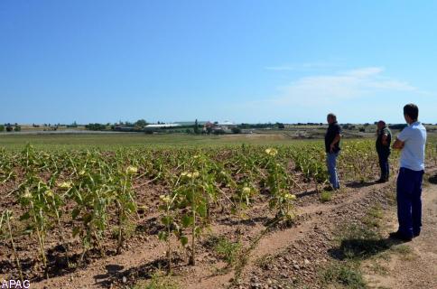 APAG pide celeridad a las administraciones para paliar los daños de las tormentas que arrasaron los campos de la Alcarria