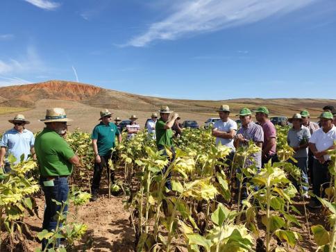 Éxito de las jornadas técnicas para agricultores del girasol y el maíz con APAG-Coagral