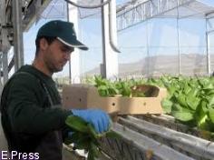 Junta amplía al 12 de noviembre el plazo para solicitar ayudas a la creación de empresas agrarias para jóvenes