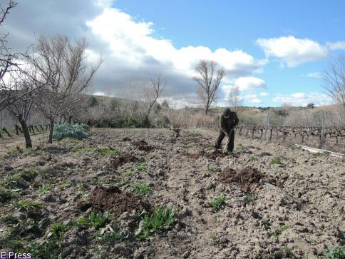 Agricultores y ganadores podrán pedir las ayudas directas de la PAC del 1 de febrero al 30 de abril de 2019