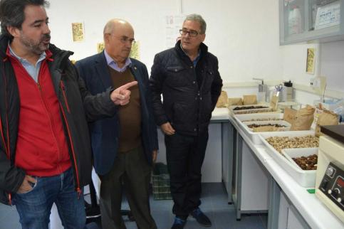 La Junta promueve la formación sobre el pistacho ante el incremento en la superficie cultiva en Guadalajara