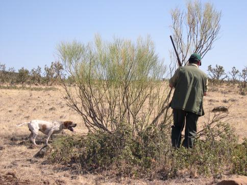 Castilla-La Mancha, un 'coto' social que genera de 630 millones anuales y 1,7 millones de jornales