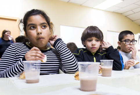 """La Obra Social """"la Caixa"""" y el Banco de Alimentos de Guadalajara impulsan la gran recogida de leche para combatir la pobreza alimentaria"""