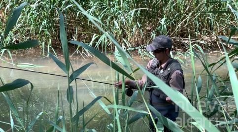 Campeonato Regional de Pesca Juventud en aguas del río Gallo
