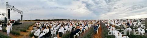 Suspendido el concierto de Bustamante en los campos de lavanda para el 19 de julio