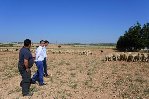 Agricultura abona hoy 6,7 millones de planes de mejoras para las explotaciones de 200 profesionales