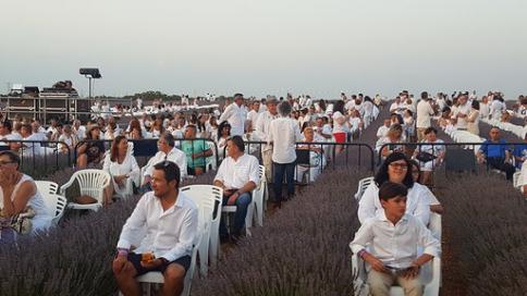 El concierto de los Aromas recauda 11.400 euros a beneficio de Nipace