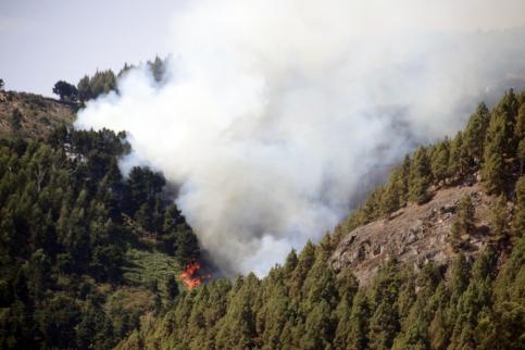 C-LM se suma con dos aviones a las labores de extinción del fuego de Gran Canaria