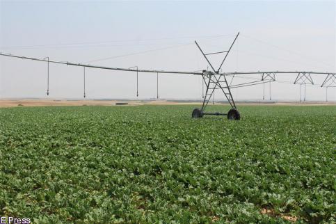 El sector agrario pide poder disponer de los insumos necesarios para garantizar el suministro de alimentos