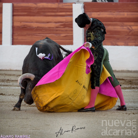 Juan Ortega cuaja una faena antológica en Linares a un toro de Juan Pedro