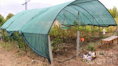 Un reglamento regirá la adjudicación de los huertos urbanos de Yebes en 2021 y dos se reservarán a fines eco-sociales
