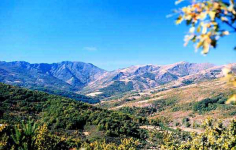 La Sierra de Ayllón, primer espacio de la Red Natura 2000 de la región en ser reconocido por su turismo sostenible
