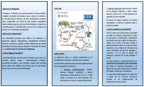 El Gobierno de Castilla-La Mancha difunde un tríptico con recomendaciones sobre cómo prevenir la triquinosis
