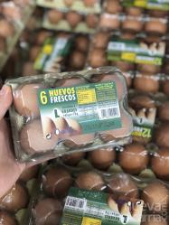 Mercadona incrementa un 10%  la compra de huevos desde Guadalajara
