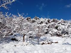 El 112 registra una veintena de incidentes en Castilla-La Mancha por nieve y hielo, la mayoría en Guadalajara