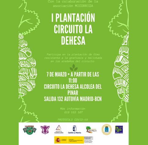 El circuito de Alcolea del Pinar reforesta sus aledaños