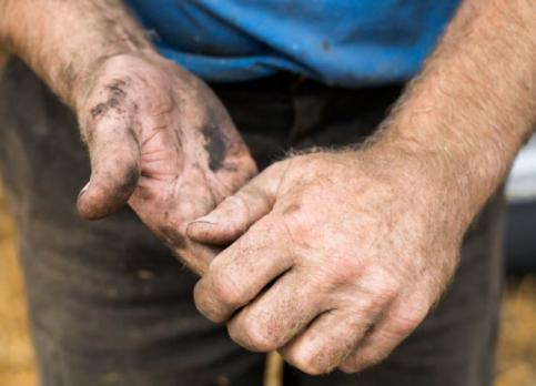 Los agricultores alcarreños no olvidan a su patrón, San Isidro Labrador, pese al Covid